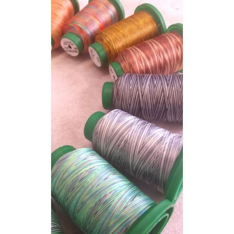 Filato poliestere da ricamo Multicolor